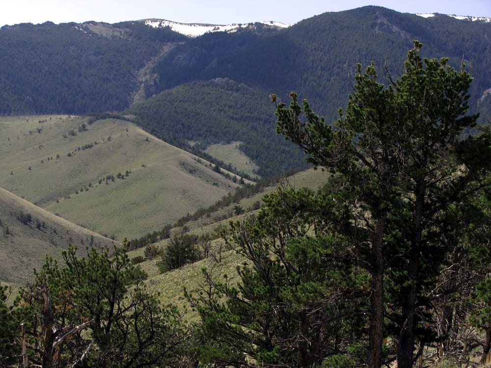 mountainlandsrealty.com