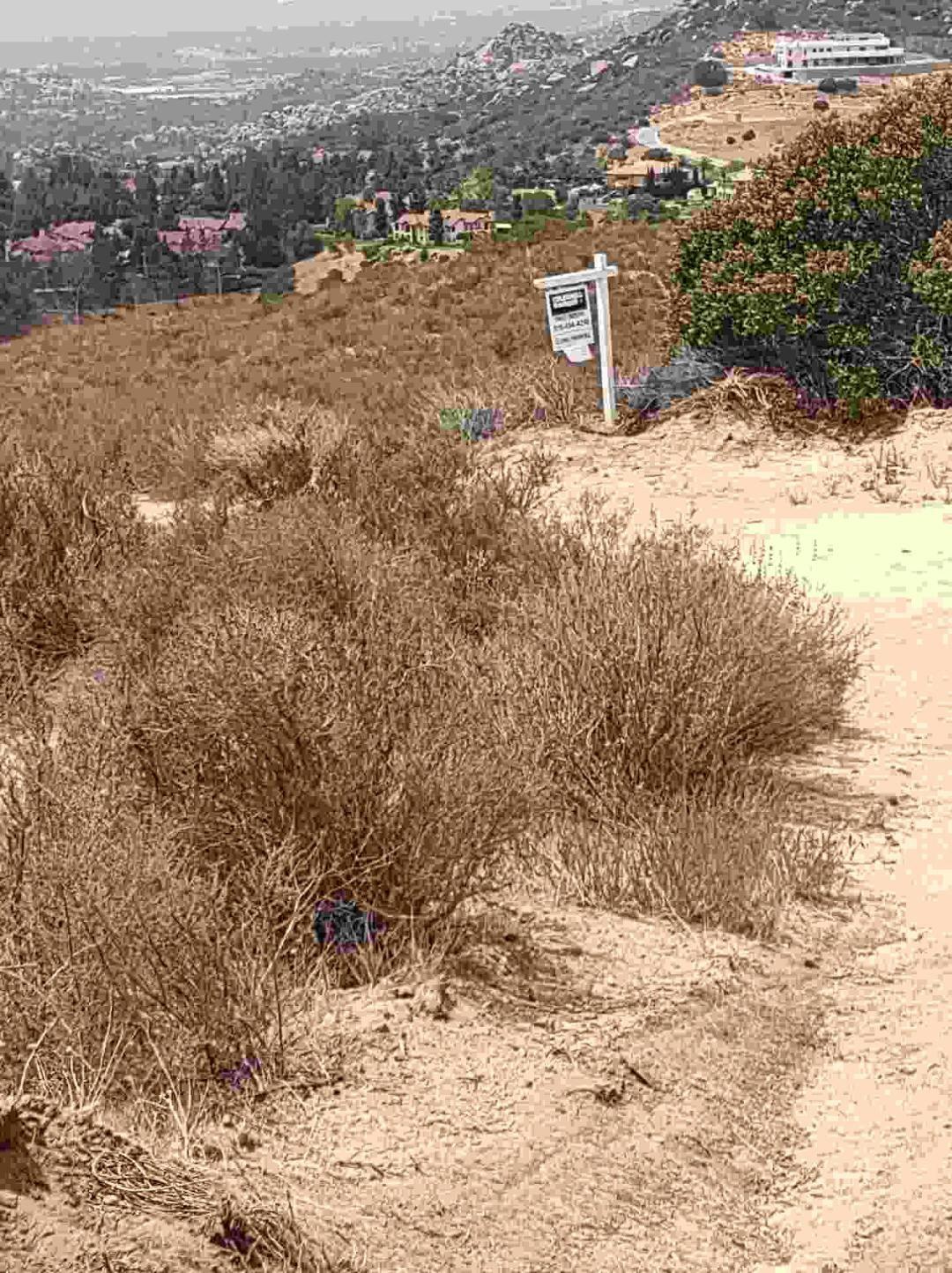 Rank Drive, CHATSWORTH, CA, 91311 United States