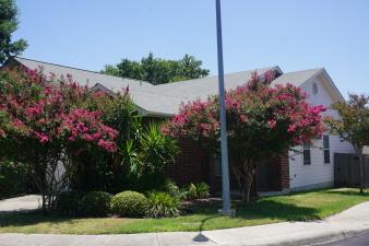 7731 Wexford Glen, San Antonio, TX, 78240 United States